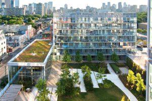 ایجاد فضای سبز